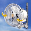 Secret Jardin Monkey Fan MFO20